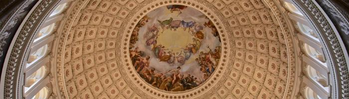 dome - wide